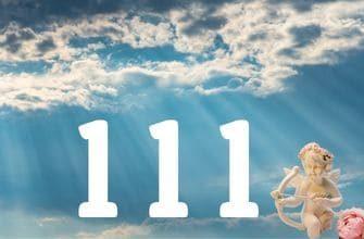 111 по Дорин Верче
